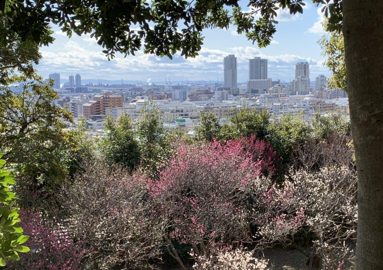 岡本公園2020